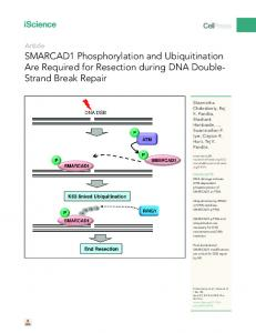 SMARCAD1 Phosphorylation and Ubiquitination Are Required for ...