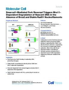 Smarcal1-Mediated Fork Reversal Triggers Mre11 ... - Cell Press