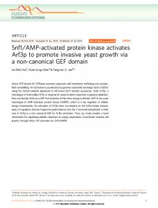 Snf1/AMP-activated protein kinase activates Arf3p to promote ... - Nature