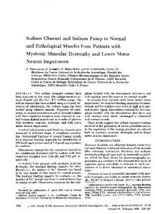 Sodium Channel and Sodium Pump in Normal and