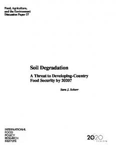Soil Degradation: A Threat to Developing-Country Food Security by ...