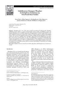 Solubilization of Inorganic Phosphate by Endophytic Pseudomonas sp ...