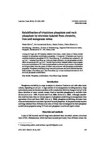 Solubilization of tricalcium phosphate and rock phosphate by