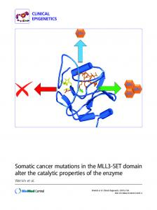 Somatic cancer mutations in the MLL3-SET domain ... - Springer Link