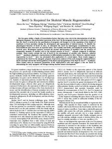 Sox15 Is Required for Skeletal Muscle Regeneration - Molecular and ...
