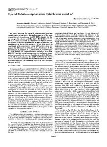 Spatial Relationship between Cytochrome a and a3 - The Journal of ...