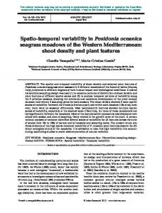 Spatio-temporal variability in Posidonia oceanica seagrass meadows
