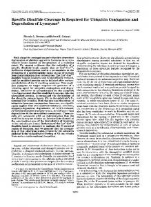 Specific Disulfide Cleavage Is Required for Ubiquitin Conjugation and ...