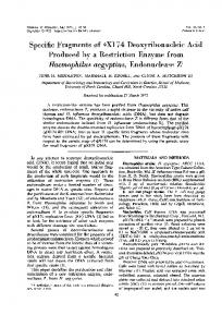 Specific Fragments of 4X174 Deoxyribonucleic Acid ... - Europe PMC