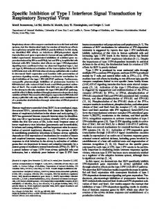 Specific Inhibition of Type I Interferon Signal ... - ATS Journals