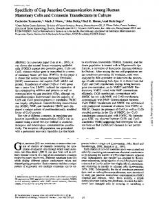 Specificity of Gap Junction Communication Among ...