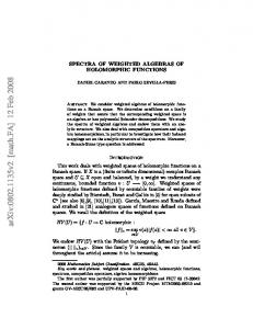 SPECTRA OF WEIGHTED ALGEBRAS OF HOLOMORPHIC