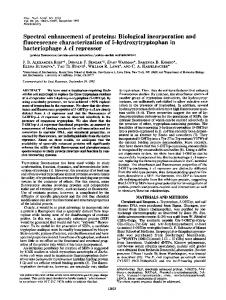 Spectral enhancement of proteins: Biological incorporation and ...