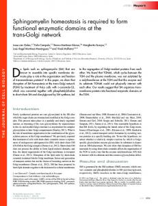 Sphingomyelin homeostasis is required to form functional enzymatic ...