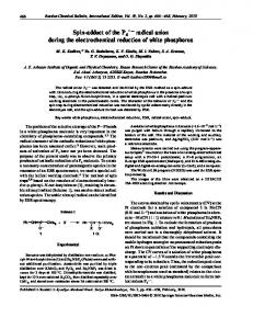 Spin adduct of the P •– radical anion during the ... - Springer Link