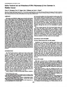 Splice Variants but not Mutations of DNA Polymerase ... - Web Pages