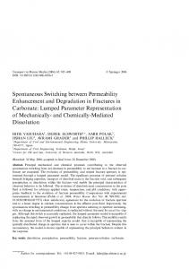 Spontaneous Switching between Permeability Enhancement and ...