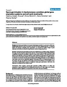 Spore germination in Saccharomyces cerevisiae ... - BioMedSearch