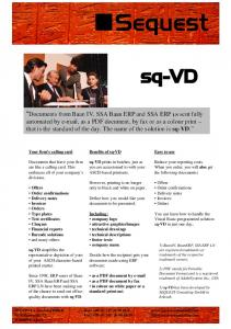 sq-VD Flyer - SEQUEST Consulting