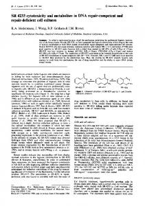 SR 4233 cytotoxicity and metabolism in DNA repair ... - BioMedSearch