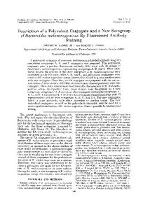 Staining - Journal of Clinical Microbiology - American Society for ...