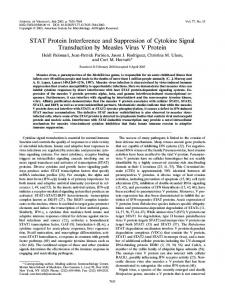 STAT Protein Interference and Suppression of ... - Journal of Virology