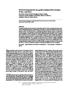 STAT3 Is Required for the gp130-mediated Full ... - BioMedSearch