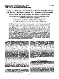 Sterol-Methyltransferase (ERG6) from Leishmania donovani and ...