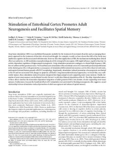 Stimulation of Entorhinal Cortex Promotes Adult Neurogenesis and ...
