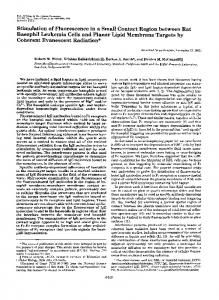 Stimulation of Fluorescence in a Small Contact Region between Rat ...
