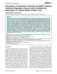 Stimulation of Osteoclast Formation by RANKL ... - Semantic Scholar