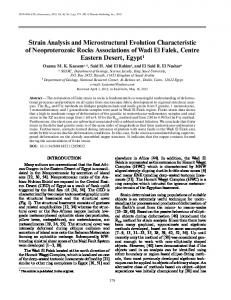 Strain Analysis and Microstructural Evolution ... - Springer Link