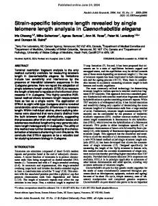Strain-specific telomere length revealed by single telomere length ...