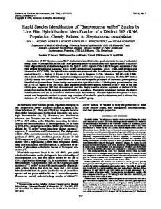 Streptococcus milleri - Journal of Clinical Microbiology - American ...