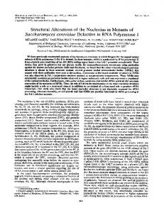 Structural Alterations of the Nucleolus in Mutants of ... - Europe PMC