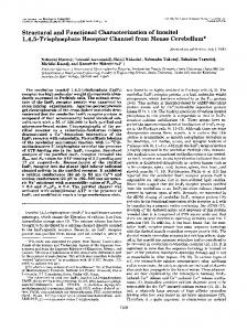 Structural and Functional Characterization of Inositol 1,4,5 ...