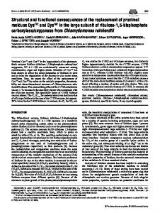 Structural and functional consequences of the