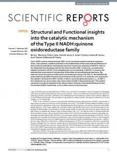 Structural and Functional insights into the catalytic