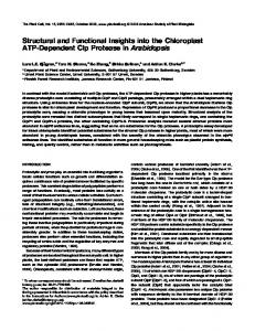 Structural and Functional Insights into the Chloroplast ATP ... - Plant Cell