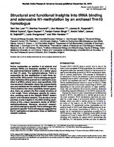 Structural and functional insights into tRNA binding ...