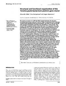 Structural and functional organization of the Yersinia pestis bacteriocin ...
