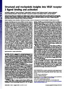 Structural and mechanistic insights into VEGF ...