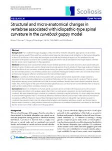 Structural and micro-anatomical changes in vertebrae ... - CiteSeerX