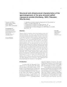 Structural and ultrastructural characteristics of the ... - CiteSeerX