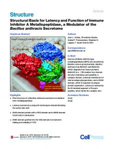 Structural Basis for Latency and Function of Immune Inhibitor A ...