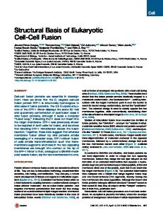 Structural Basis of Eukaryotic Cell-Cell Fusion - Cell Press