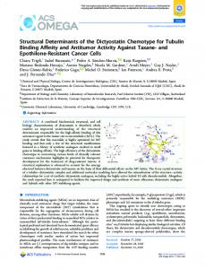 Structural Determinants of the Dictyostatin ... - ACS Publications