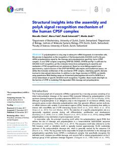 Structural insights into the assembly and polyA ... - Semantic Scholar