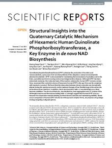 Structural Insights into the Quaternary Catalytic