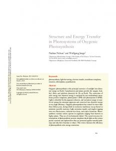 Structure and Energy Transfer in Photosystems of Oxygenic